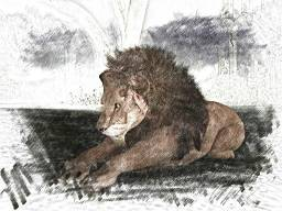 And then I saw that he was a great lion.