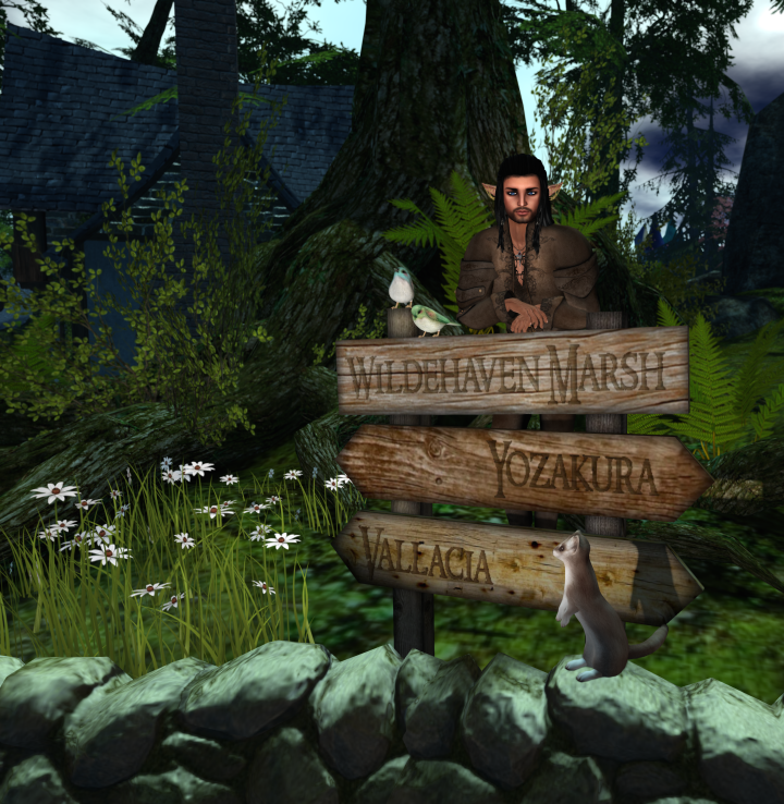 I have stood at the junction of two realms in Wildehaven Marsh.