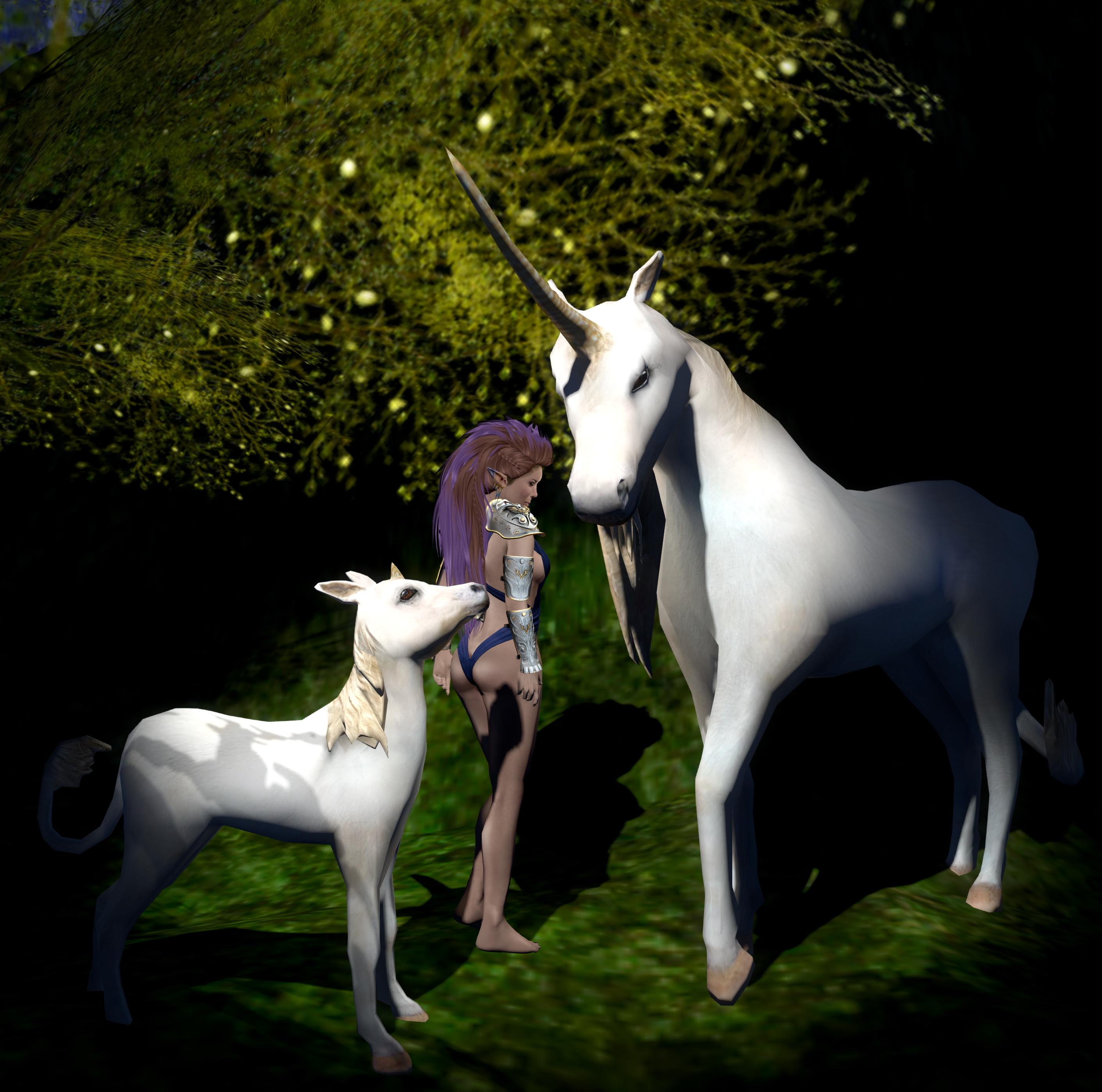 I met a lot of unicorns.