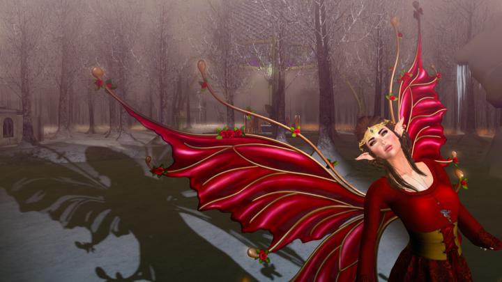 Dream of Winter BLOG - 2