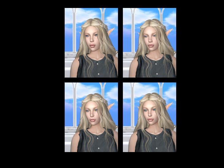 Lelutka Head Comparison