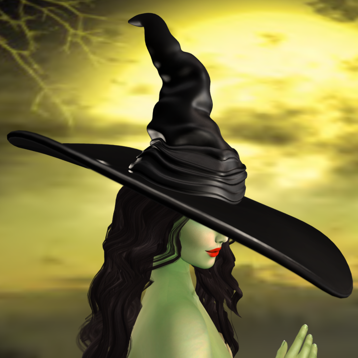 Wicked Witch BLOG - 1