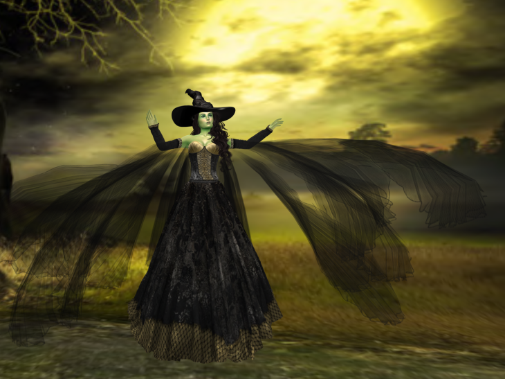Wicked Witch BLOG - 5