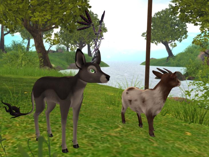 Deer And Loathing BLOG - 11