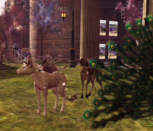 Deer And Loathing BLOG - 33