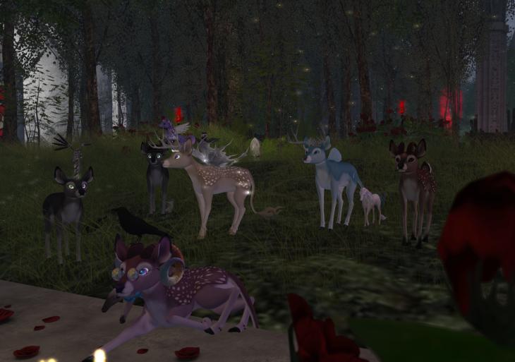 Deer And Loathing BLOG - 5