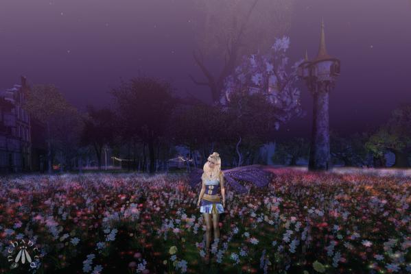 Faery At Night BLOG - 3