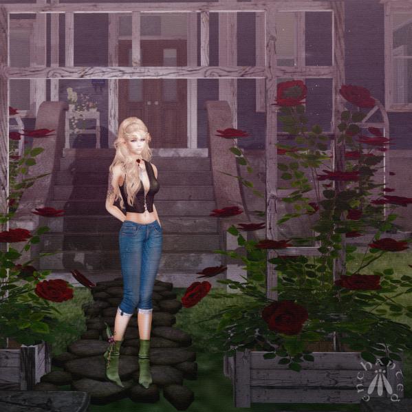 Gardening - BLOG - 2