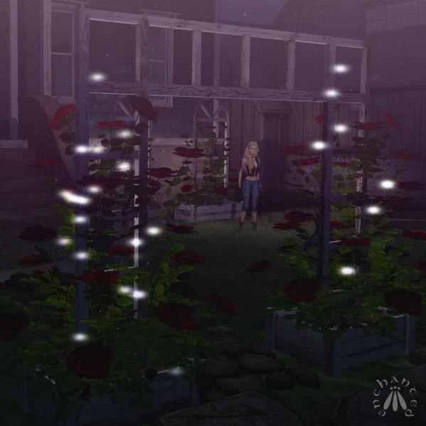 Gardening - BLOG - 8