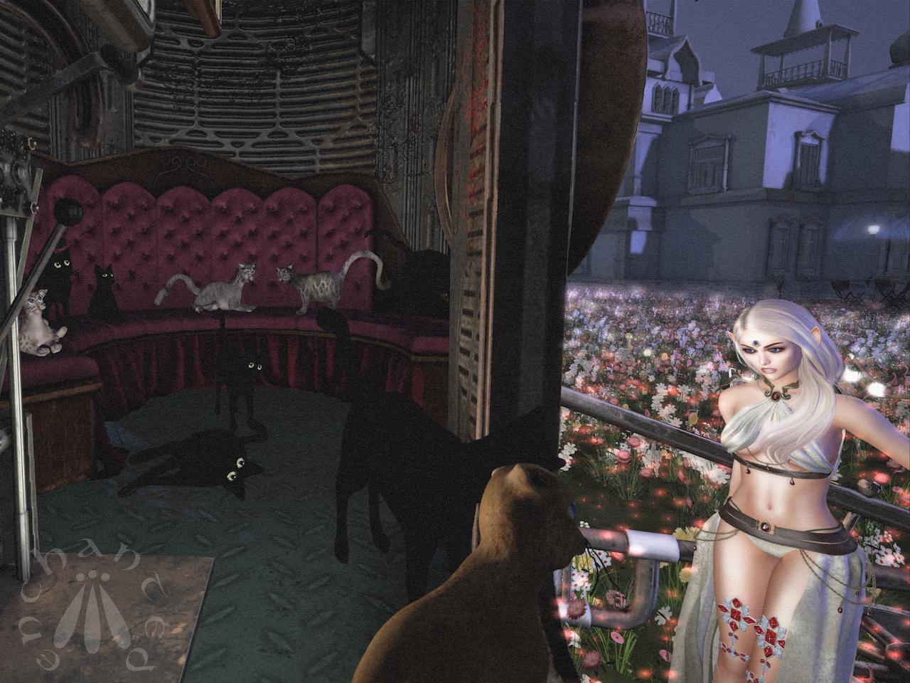 Steampunk Cats BLOG - 8