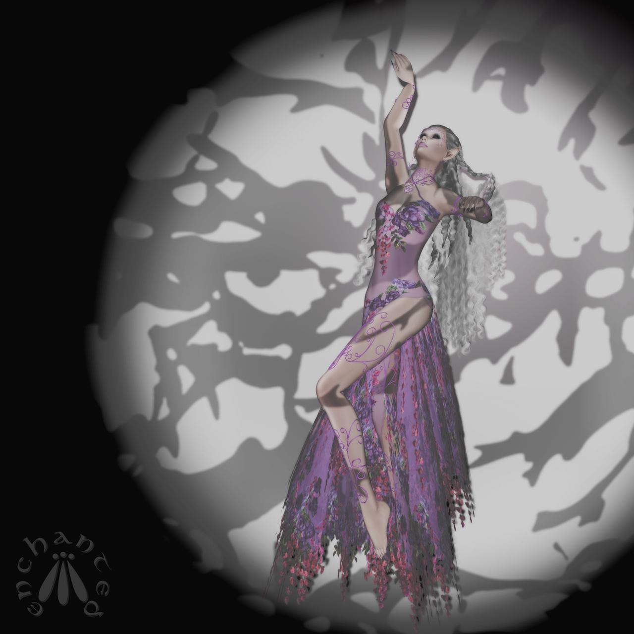 FairyDancer BLOG - 1