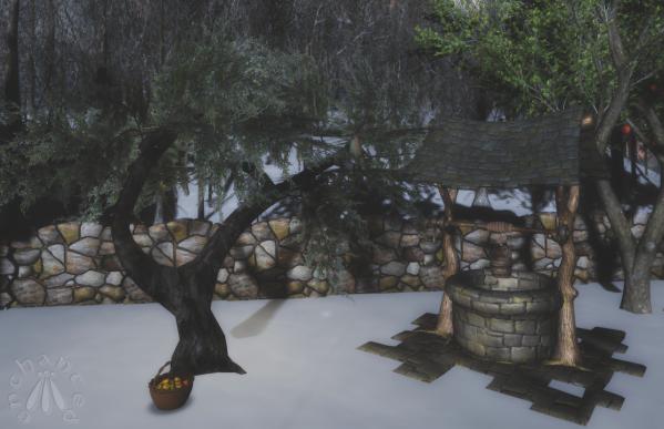 Juniper Tree BLOG - 6