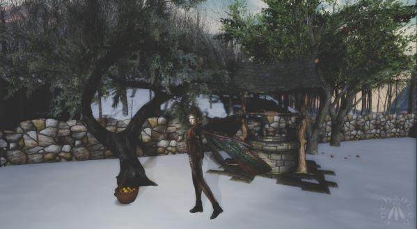 Juniper Tree BLOG - 7