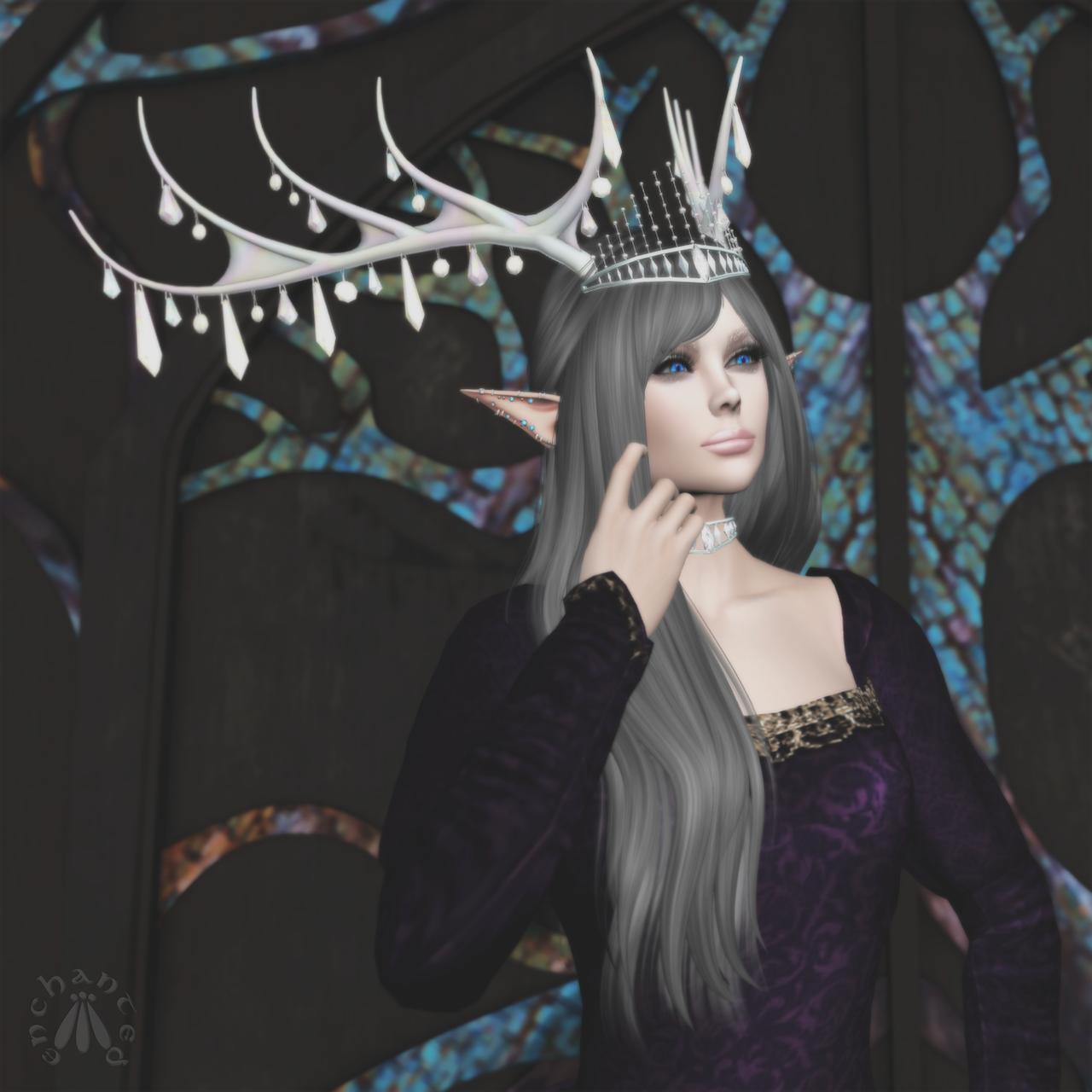 Winter's Hollow II BLOG - 4