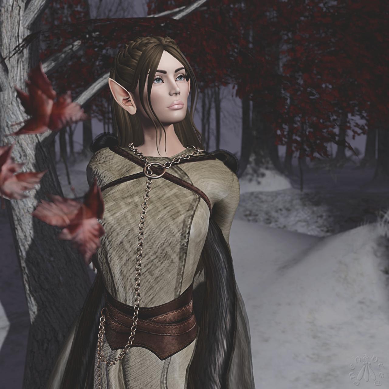 Sansa 2 BLOG - 2