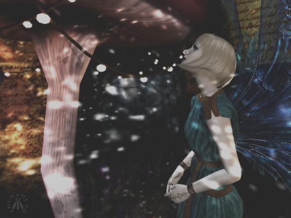 Door into Autumn BLOG - 3
