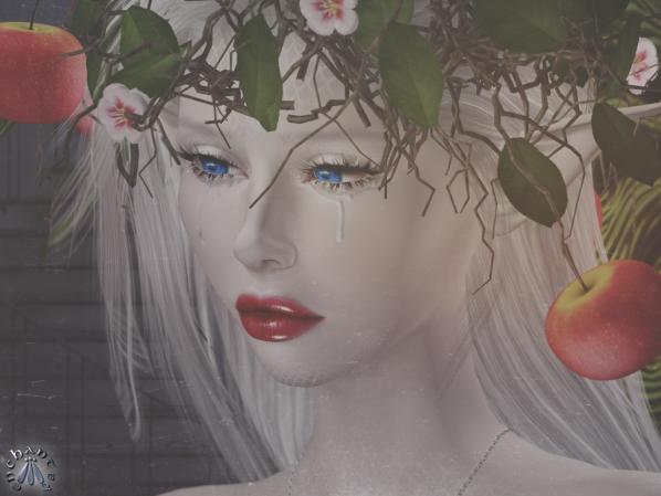 Creatrix - 8 BLOG