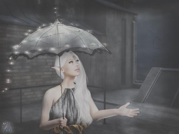 London Rain Roof - 2 BLOG