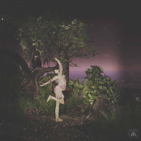 faedance_006 BLOG